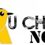 Challenge-Auchan-2011-marketing-de-la-distribution55