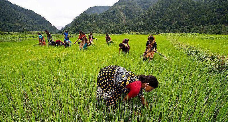 développement durable, le SRI