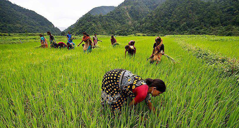 agro-écologie