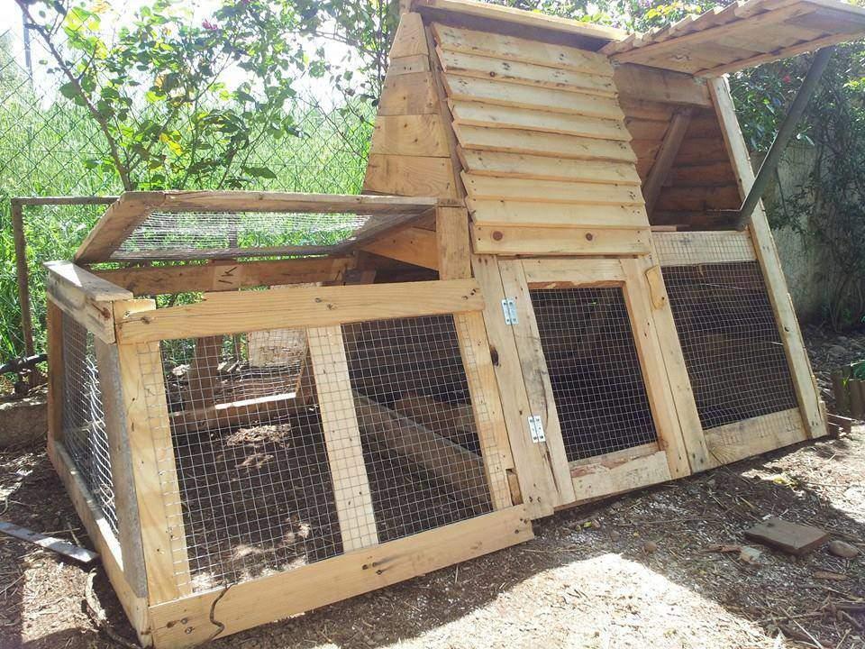 Adoptez deux poules et faites 200 euros d 39 conomies par an chez seve a - Construire en palette ...