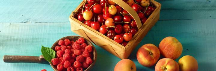 fruit-720x238