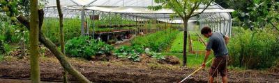 agriculture sans pesticides