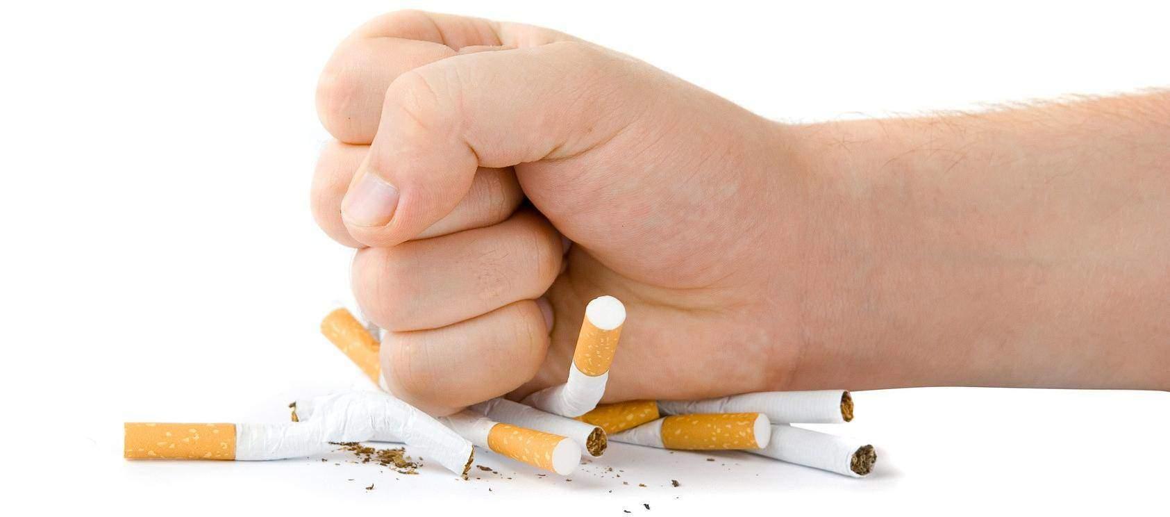 Cesser de fumer en trois jours des lièvres