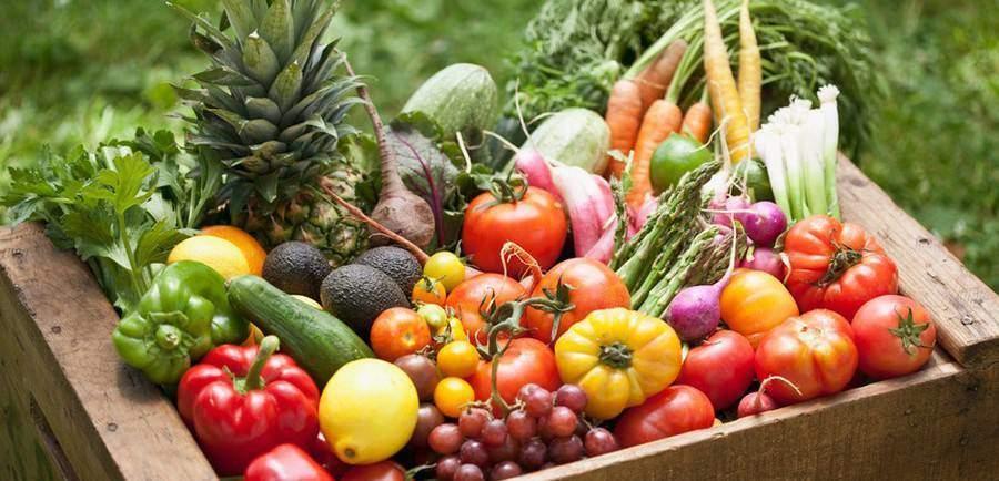 L'agriculture biologique pourrait-elle nourrir la planète entière ?