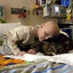 animaux pour soulager les enfants malades du cancer