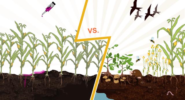révolution du monde agricole