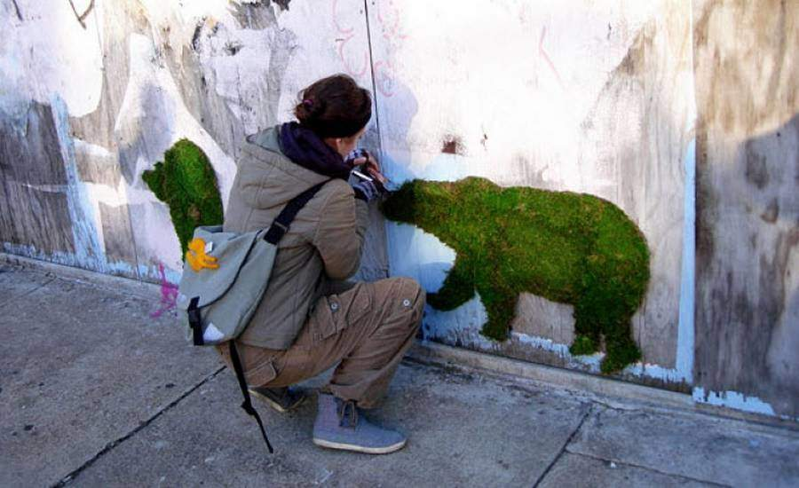 graffiti vegetal