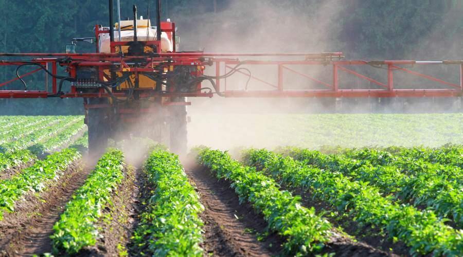 pesticides dangereux autorisés