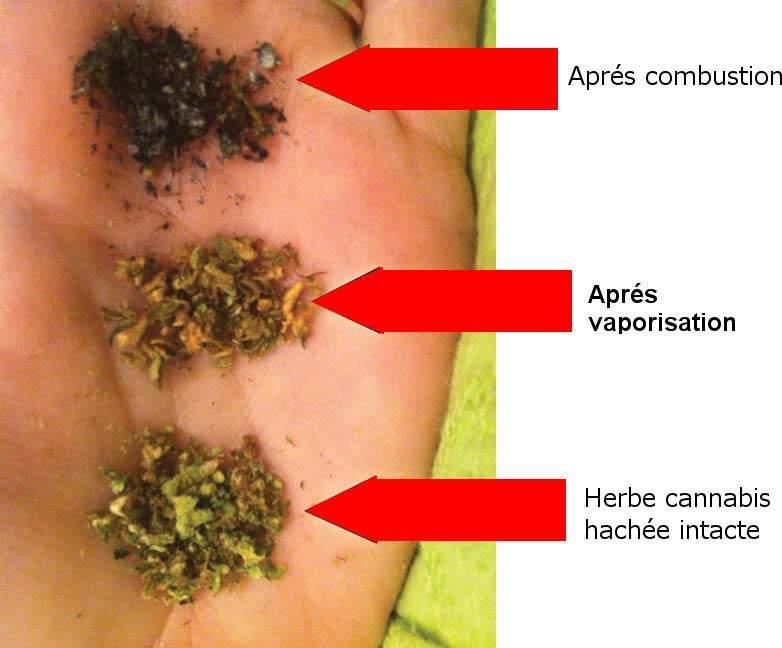 Effets physiques de fumer de la marijuana