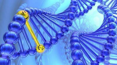prédisposition génétique au bonheur