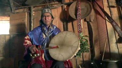 médecine traditionnelle mapuche