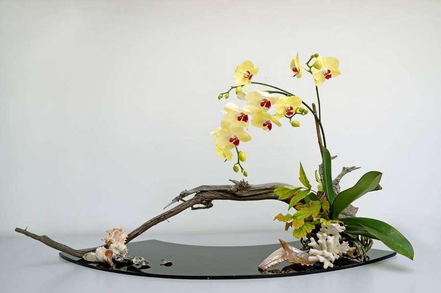 Ikebana  lart floral japonais ancestral pratiqu dans le monde