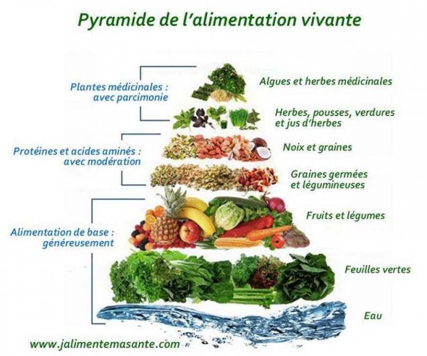 Une alimentation vivante est un bon moyen de construire sa - Cuisine vivante pour une sante optimale ...