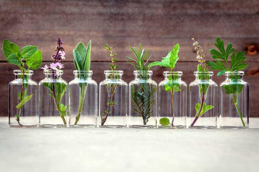 guide complet des huiles essentielles