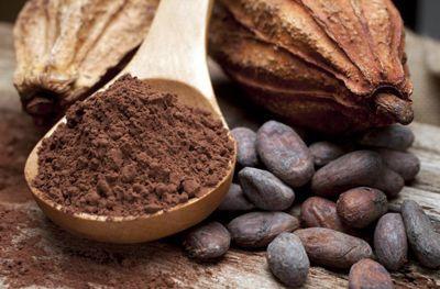 chocolat dans recettes salées