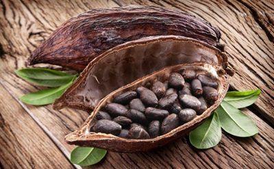 chocolat dans les recettes salées