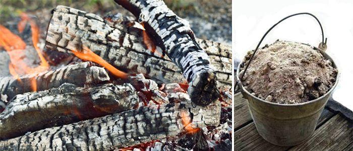 cendre de bois